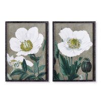 Poppy Prints, Set Of 2