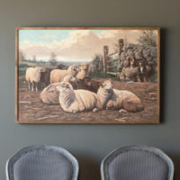 Farm Sheep Framed Print